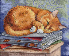 "Counted Cross Stitch Kit MP STUDIO HB-595 - ""Scientist cat"""