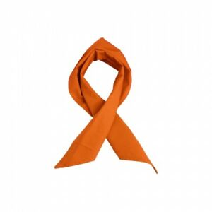 Foulard Triangulaire - Orange