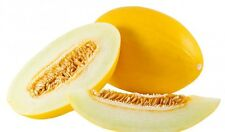 Paradise MELON seed (24) Personal size + (24) Juan Canary Melon Sweet
