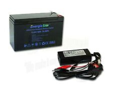LiFePo4 6Ah Rechargeable Battery 12.8V Lithium Iron Phosphate 12V with Charger