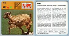 Goat - Mammals - 1970's Rencontre Safari Wildlife Card