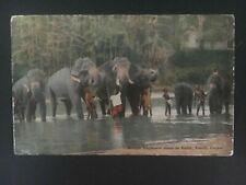 1942 Ceylon Naval PO RPPC Postcard Censored Cover To London England Elephants