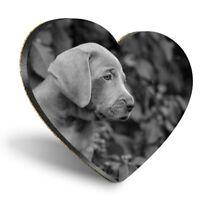 Heart MDF Coasters - BW - Weimaraner Puppy Dog Cute Pet Animal  #43753
