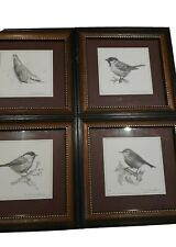 Framed Bird Prints. Drawings by  E. OVENSTONE Set Of 4.signed and numbered.
