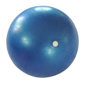 "5PCS Bulk Pilates Yoga 10"" Ball Fitness over ball bender with Pump"