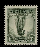 AUSTRALIA 1937-49 1/- GREY GREEN PERF. 13.5 X 14 (SG 174)  LMM