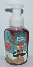 NEW BATH & BODY WORKS STASHER REINDEER RASPBERRY GENTLE FOAMING HAND SOAP WASH