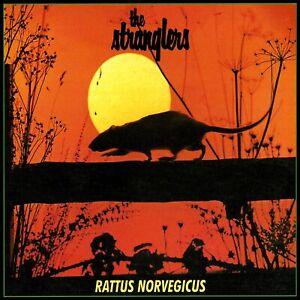 "Reproduction ""Stranglers - Rattus Norvegicus "", Album Poster, Size: 16"" x 16"""