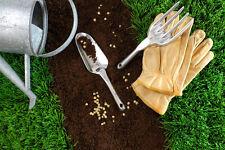 Kit jardin potager lot de Graines légumes Méthode BIO semis plantes fleurs seeds