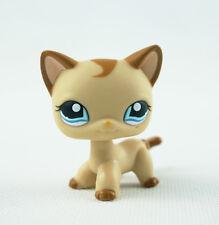 Littlest Pet Shop LPS Toy #1024 Caramel Swirl Shorthair Cat Kitty Girl Gift