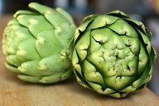 Artischocke Green Globe 5+ Samen - Winterharte Delikatesse!