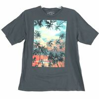 Sunset Palm Trees Surfer Tee Shirt Mens Size XL Faded Gray Short Sleeve Cotton