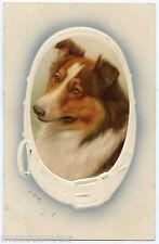 PORTRAIT MéDAILLON DE CHIEN COLLEY. DOGS. HUNDE. GAUFRé. EMBOSSED.