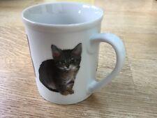 Oscar Of Bromley Cat Decorated Ceramic/Porcelain Fine China Mug Cup