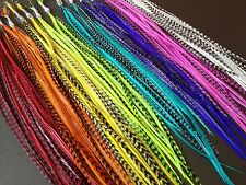 40 Hair Feathers, Feather Hair Extensions, Grizzly Colors Bright Real RAINBOW
