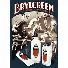 Brylcreem Hair small metal sign 210mm x 150mm   (hb)