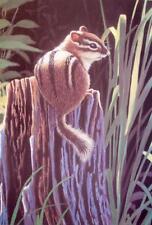 Spring Arrival, Cyril Cox, Canadian Wildlife Art, Original L/E Signed, COA
