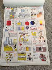 Vintage Science Chart Set