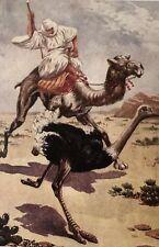 Feldmann, Josef. Im Lande der Mezab Wüstenabenteuer aus dem Süden Algeriens 1930