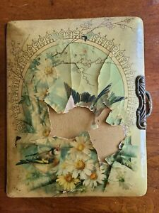 ANTIQUE ID'd Celluloid Photo Album, Cabinet Card, Tintype & CDV Images