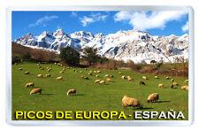 PICOS DE EUROPA ESPAÑA MOD2 FRIDGE MAGNET SOUVENIR IMAN NEVERA