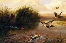 Oil painting arthur-fitzwilliam-tait-duck-shooting hunter with dogs in landscape