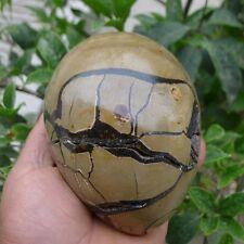 3.3LB Large Dragon Septarian Crystal Sphere Geode Egg Healing Madagascar