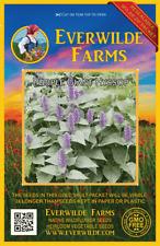 2000 Purple Giant Hyssop Wildflower Seeds - Everwilde Farms Mylar Seed Packet