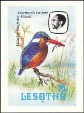 Lesotho 1982 Birds/Malachite Kingfisher/Dragonfly/Nature Postcard (a95)