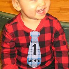 Baby Boy Monthly Necktie Milestone Monthly Tie Stickers Shower Gift SL