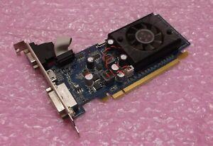 Dell FTGGG 0FTGGG VGA DVI HDMI PCi-E GeForce 310 512MB Pegatron Graphics Card