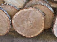 3 Baumscheiben, Baumscheibe, Holzscheibe, 20,25,30 cm, Eiche, Etagare