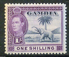 Mint No Gum/MNG Gambian Stamps (Pre-1965)