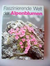 Faszinierende Welt der Alpenblumen 1981