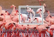Liberia 2015 - West Africa Birds on Stamps - Souvenir Sheet MNH