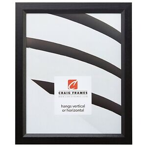 """Craig Frames Satin Black Picture Frames & Poster Frames, .8"""" Wide, Solid Wood"""