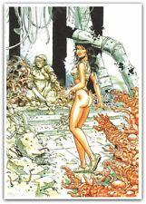 Ex-libris Meynet Hommage à Druuna de Serpieri signé 21x29,7 cm