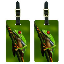Green Red Eyed Tree Frog - Tropical Rainforest Luggage Suitcase ID Tags Set of 2
