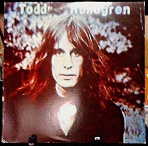TODD RUNDGREN Hermit of Mink Hollow Album Released 1978 Vinyl/Record  Collection