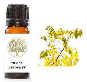 100% Pure Cassia Absolute Oil