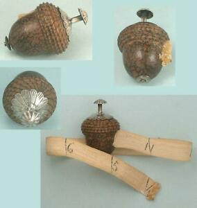Antique Sterling Silver & Palm Wood Acorn Tape Measure * English * Circa 1880
