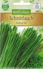 4985 Chrestensen Schnittlauch 'Medium leaf'mittelgrobröhrig mehrjährig Samen