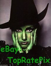 IDINA MENZEL  -  Wicked's Elephaba  (Broadway)  8x10 Photo #3