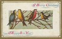 Vintage Postcard Christmas Birds on Branch Red Yellow Blue Gold Border