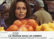 FAYE DUNAWAY LA MAISON SOUS LES ARBRES 1971 VINTAGE PHOTO LOBBY CARD N°5