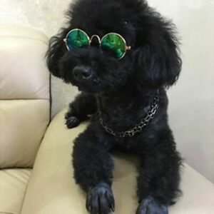 Pet Dog Glasses Products Eye Wear Sunglasses Photos Props Accessories Supplies