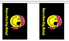 HAVE A NICE DAY MATEY pirate smiley face 3 metre BUNTING 10 FLAGS flag