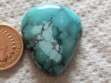Turquoise Cabochon 39 carat Cab Unknown Origin Mystery Web Blue Green Boulder