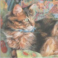 Ojos Verdes Lindo Gato atigrado de pelo largo Chrissie Snelling tarjeta De Saludos En Blanco