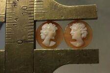 Women's Heads Shell Cameos #202 Antique Pair Of Cameos 9mm
